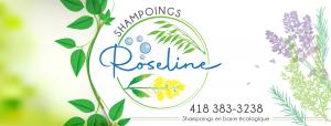 Identité visuelle Shampoing Roseline Couverture facebook